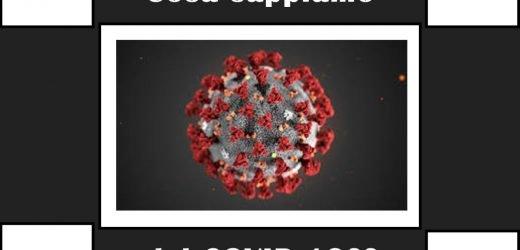 Revisione delle caratteristiche cliniche  relative al Coronavirus 2019 (COVID-19)